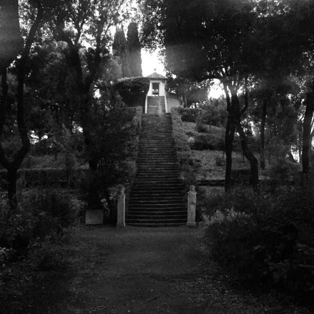 Hommage à Denis Roche et à son escalier de Copán. Laure Limongi, le Bosco, Villa Médicis, vendredi 4 septembre 2015.