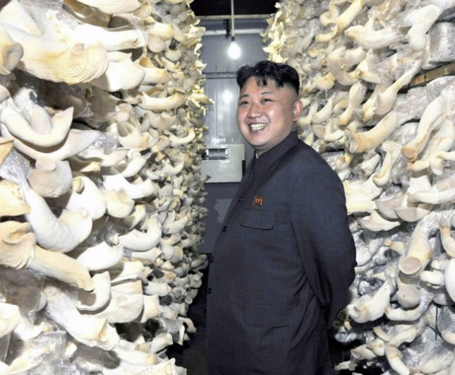 Kim Jong-un_mushrooms